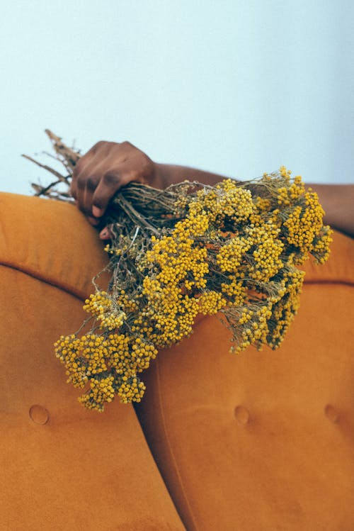Photo of Person's Hand Holding Yellow Flowers