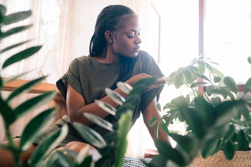 Woman Sitting Near Green Plants