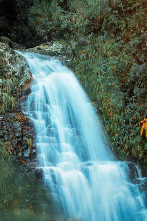 Photos gratuites de cascades, chutes d'eau, couler, eau