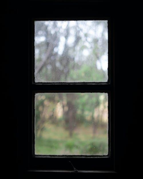 Ảnh lưu trữ miễn phí về cabin, cửa sổ, ngưỡng cửa sổ