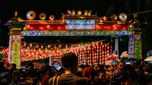 Free stock photo of back light, Chittagong Division, city