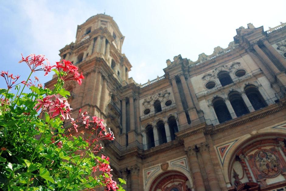 building, church, málaga cathedral