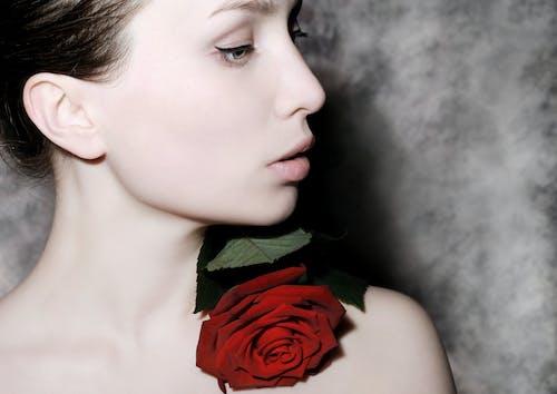 Foto stok gratis atraktif, bagus, bunga, dandan