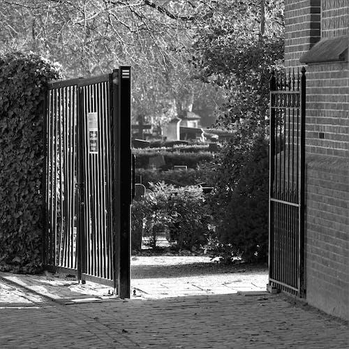 Foto d'estoc gratuïta de entrada del cementiri