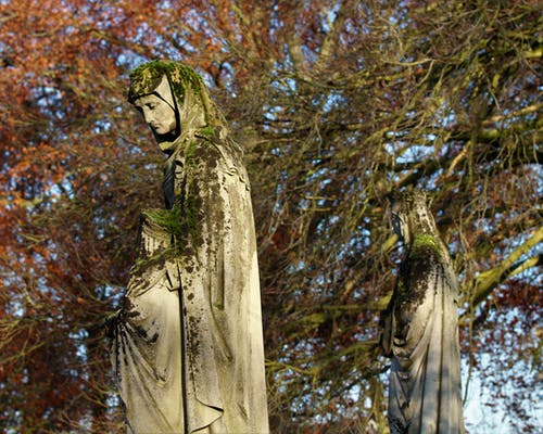 Foto d'estoc gratuïta de estàtues al bosc