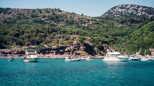 Free stock photo of adriatic coast, adriatic sea, bay
