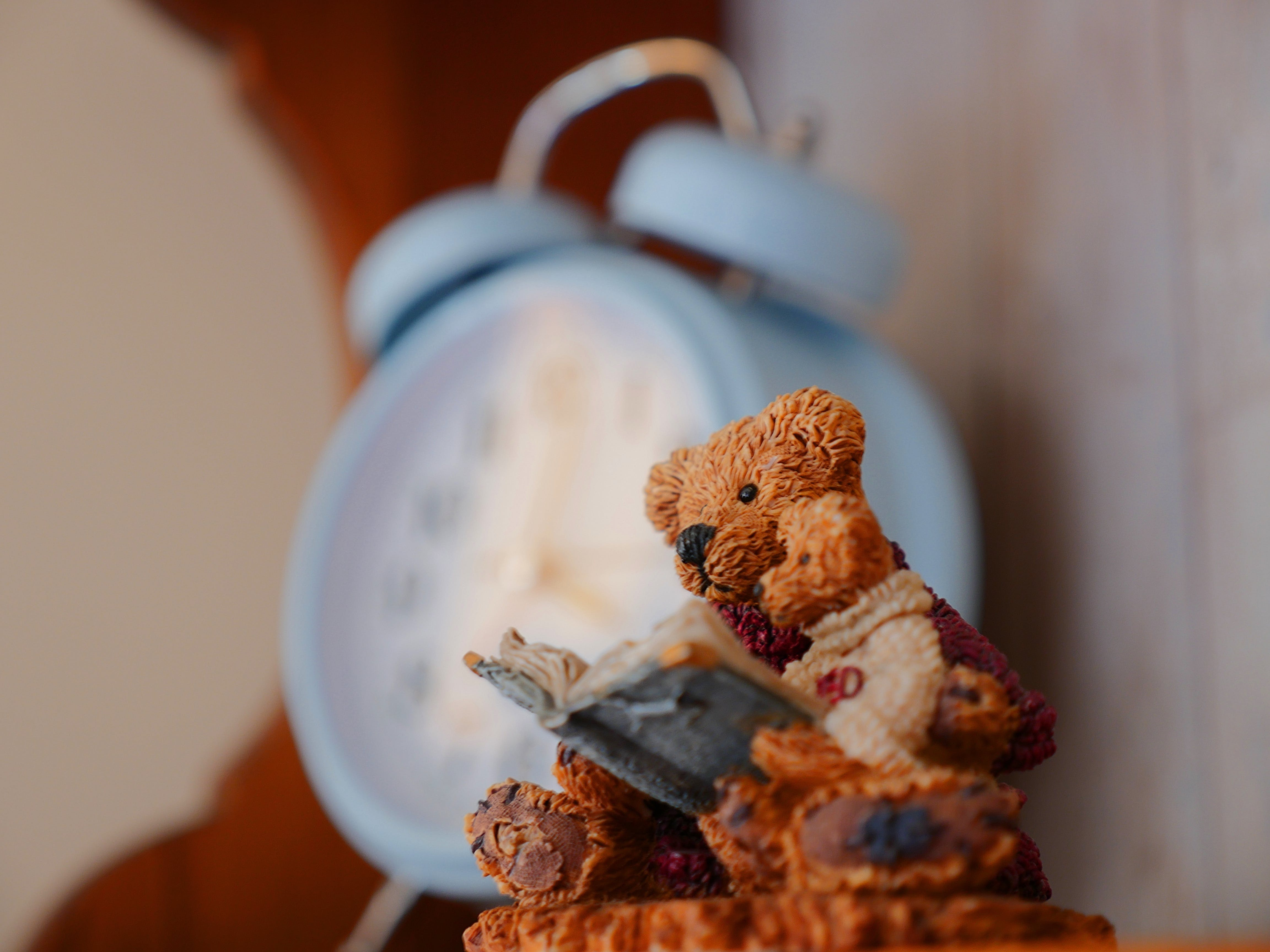 Selective Focus Photography of Bears Reading Book Figurine