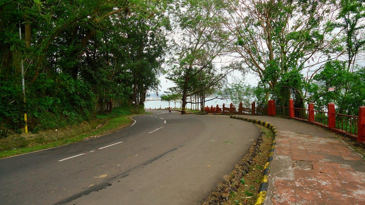 路, 道路, 馬路