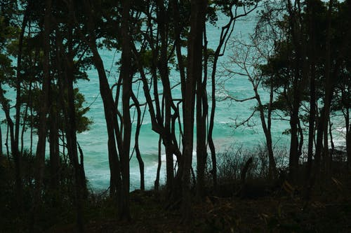 Free stock photo of beach, beach island, beauty, blue