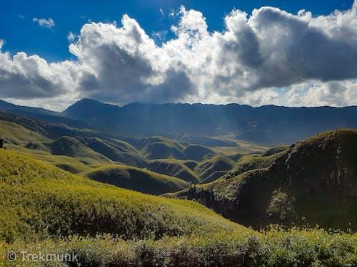 Δωρεάν στοκ φωτογραφιών με dzukou κοιλάδα, nagaland, trekking, βούκερος