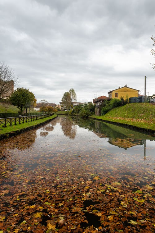 Free stock photo of acqua, autumn, autunno