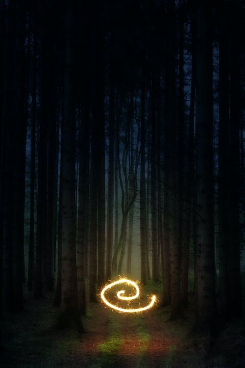 ánh sáng, bí ẩn, bức tranh sáng sủa
