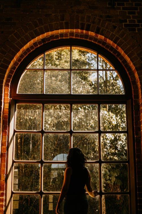 Ảnh lưu trữ miễn phí về ánh sáng ban ngày, chén, con gái, cửa sổ