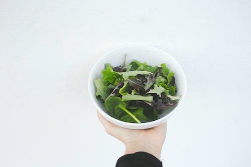 Gratis arkivbilde med fersk sala, fersk salat, grønn, grønnfarger