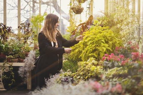 Woman in Black Long Sleeve Dress Holding Flowers