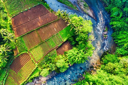 Aerial Photography of Farmland Sorrounded by Stream