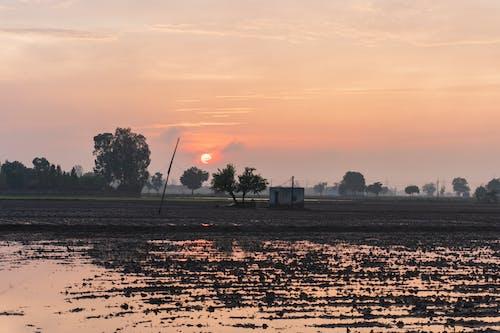 Free stock photo of farming, house, landscape