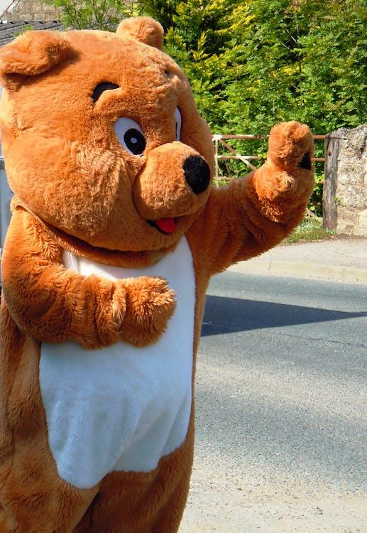 Free stock photo of bear, teddy bear