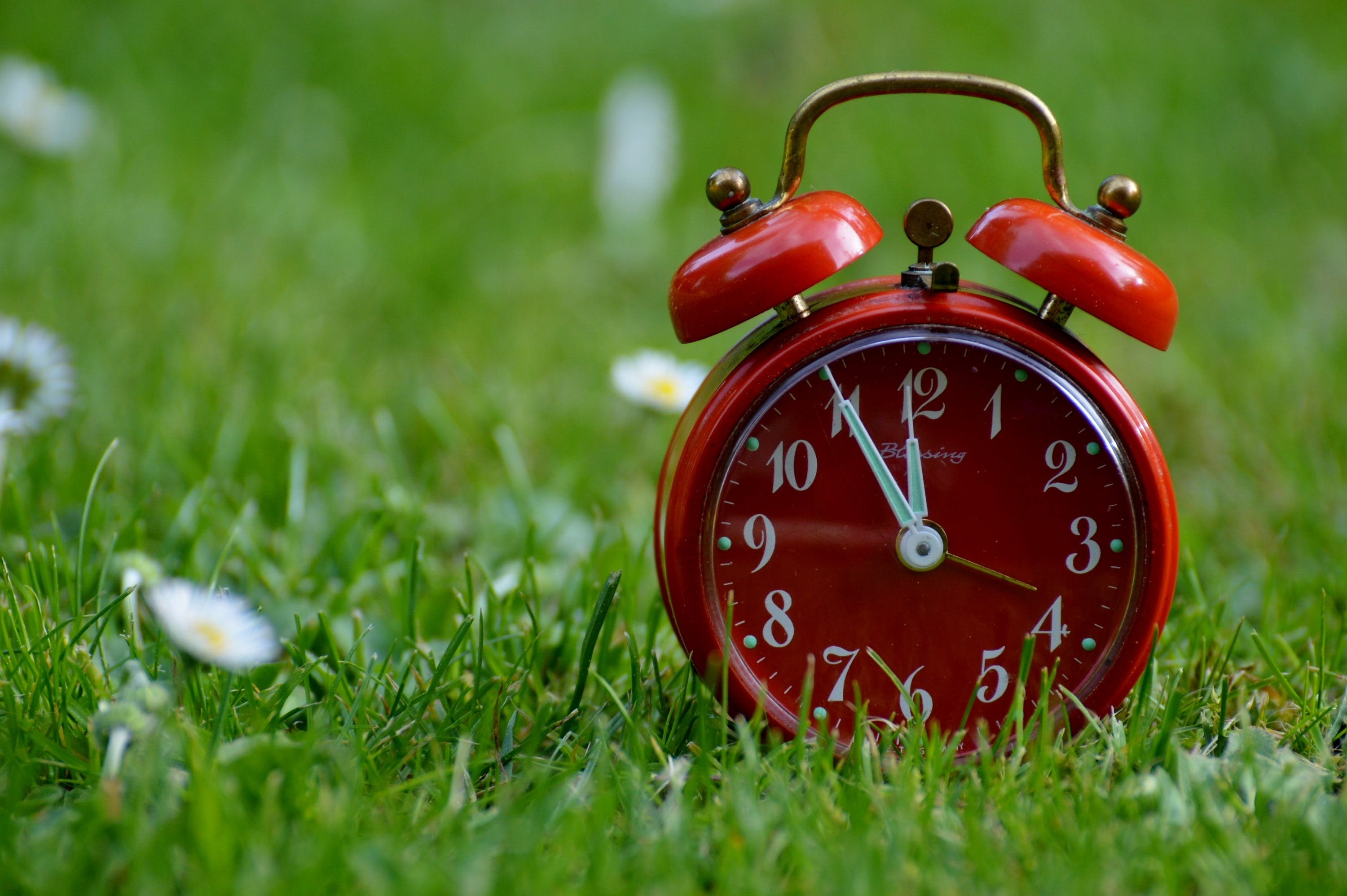 Red 2-bell Alarm Clock on Grass Field