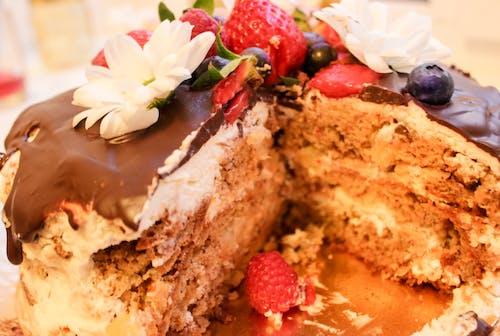 Free stock photo of cake, chamomile, chocolate