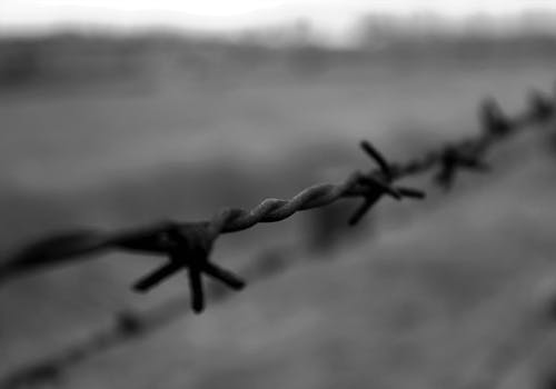 Free stock photo of auschwitz, barb wires, black and white, concentration camp