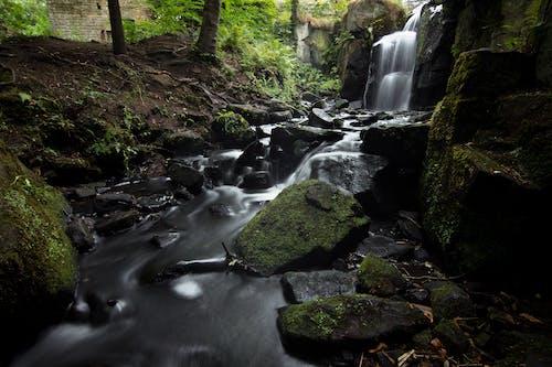 Imagine de stoc gratuită din apă curgătoare, cascadă, cascade, curent