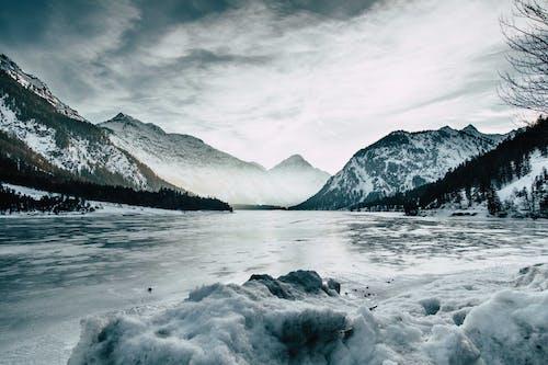 冬季, 冷, 大雪覆盖, 天性 的 免费素材照片