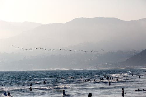 Flock Flying Birds Under People on Ocean