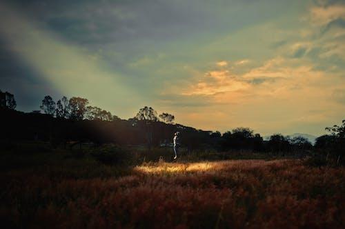 Free stock photo of abduction, fiction, landscape