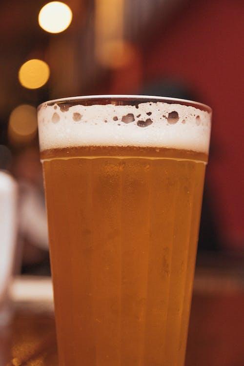 啤酒, 歡樂時光, 酒精, 酒精飲料 的 免費圖庫相片