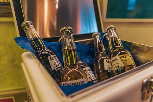 啤酒, 啤酒瓶, 酒精瓶, 酒館 的 免費圖庫相片