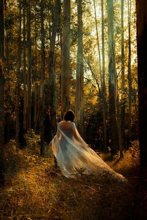 Woman in a Blue Dress Walking in Forest