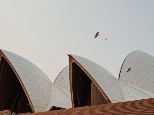 Low Angle Photography Of Sydney Opera House