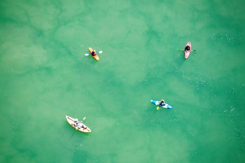 People Riding on White and Blue Boat on Green Water