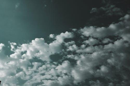 arka fon, HD duvar kağıdı, karamsar, parlak gökyüzü içeren Ücretsiz stok fotoğraf