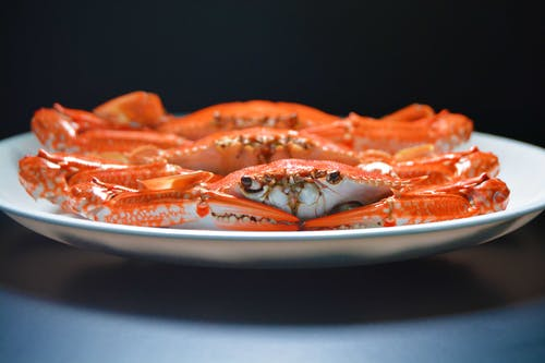 Photo of Crab on White Ceramic Plate