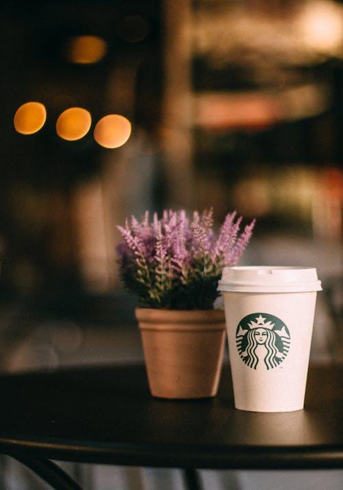 Ilmainen kuvapankkikuva tunnisteilla kahvi, kahvikuppi, kattila, kukat