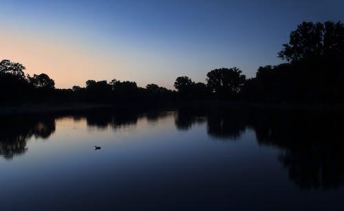 Foto stok gratis danau, dini hari, long exposure