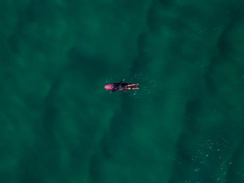 Aerial View Of Person Paddling