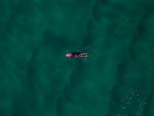Δωρεάν στοκ φωτογραφιών με drone, αναψυχή, άνθρωπος, από πάνω