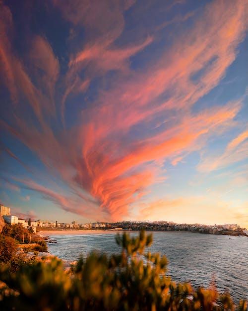 Free stock photo of bay, Bondi, Bondi Beach, clouds