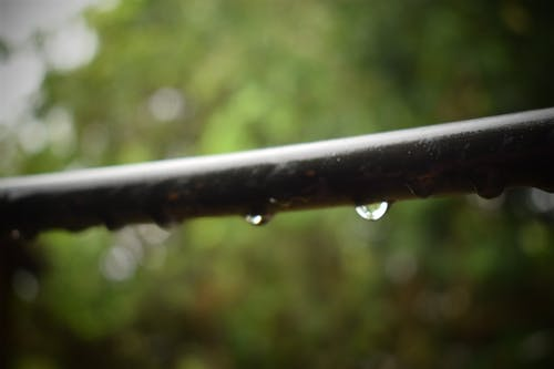 su damlası fotoğrafçılık içeren Ücretsiz stok fotoğraf