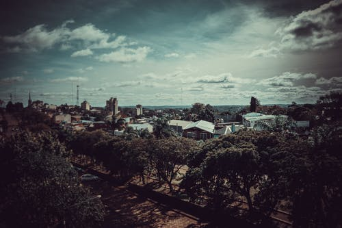 gökdelenler, gökyüzü ağacı, şehir gökyüzü içeren Ücretsiz stok fotoğraf