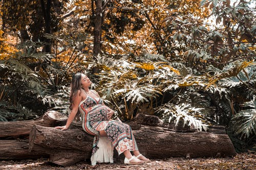 Woman in White and Red Floral Dress Sitting on Brown Log