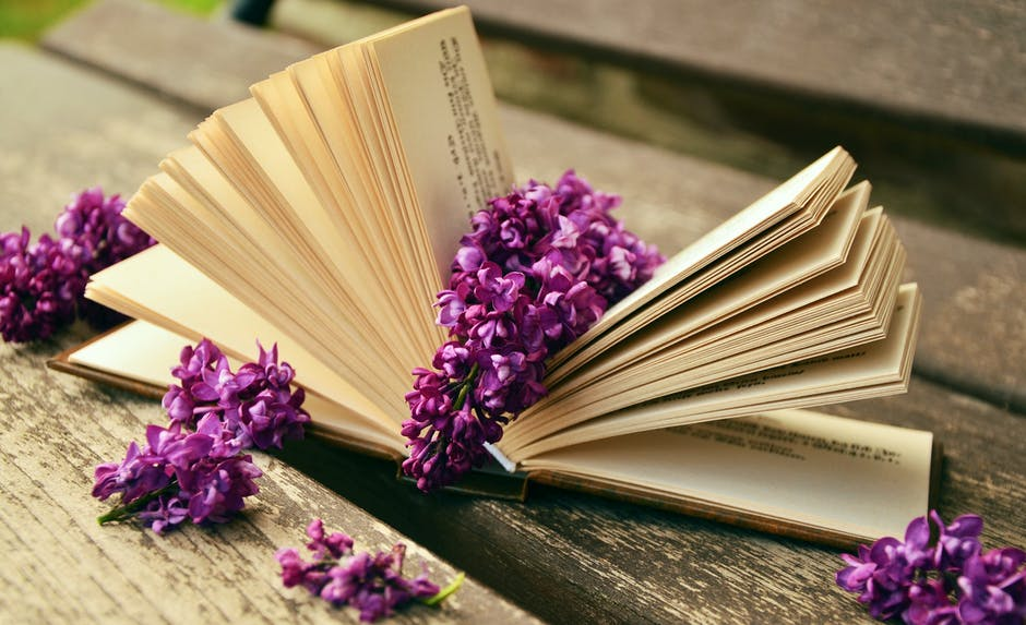 bloom, blossom, book