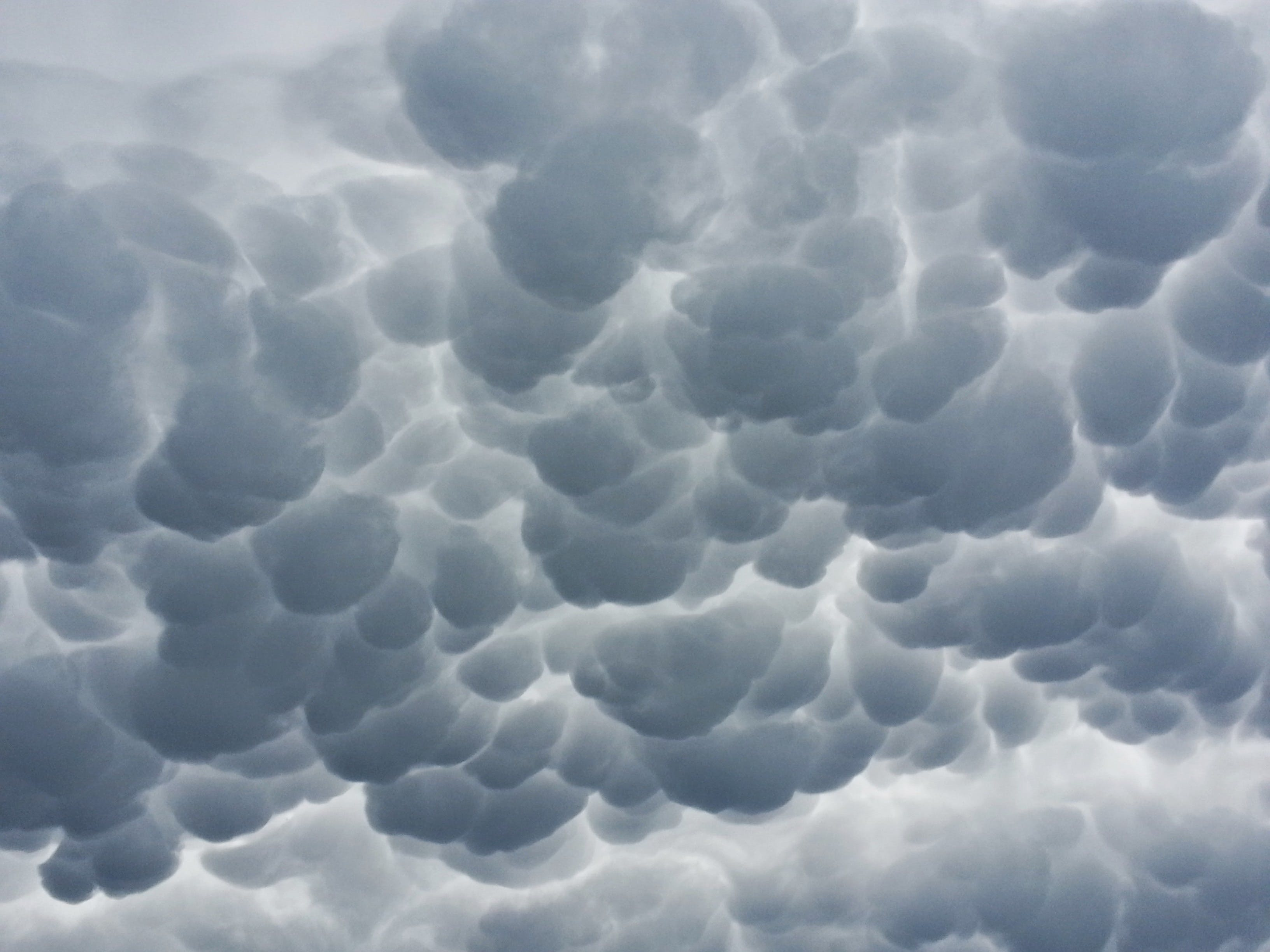 Free stock photo of clouds, cloudscape, dark, eerie