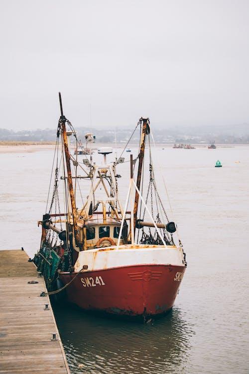 Ingyenes stockfotó dokkolt, hajó, hajóm csónak, halász témában