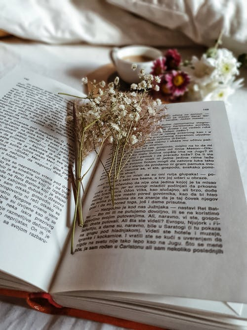 From above of opened book with dried flowers and cup of coffee with fresh flowers in bed at morning time