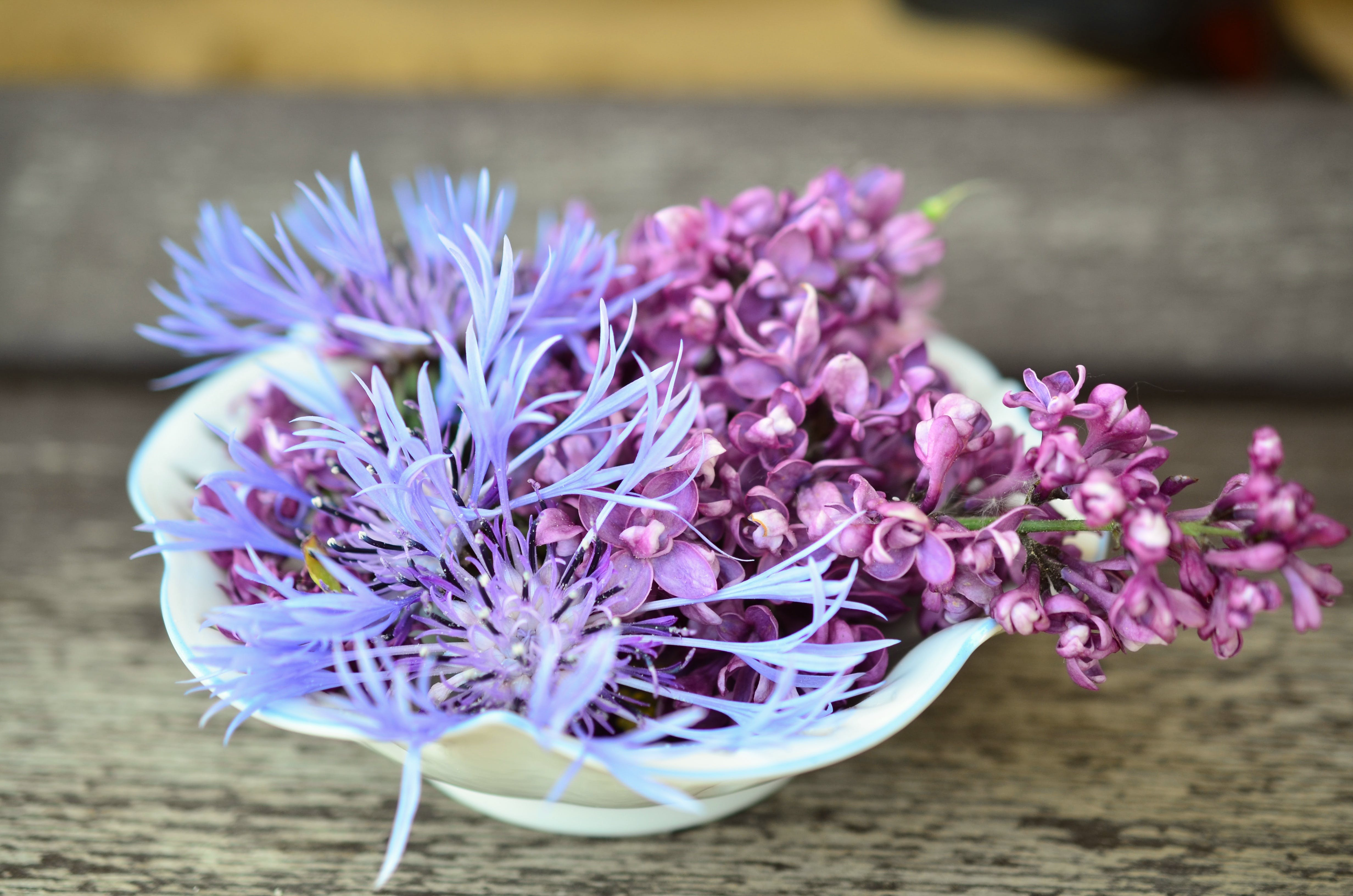 Free stock photo of flowers, decoration, hall, lilac