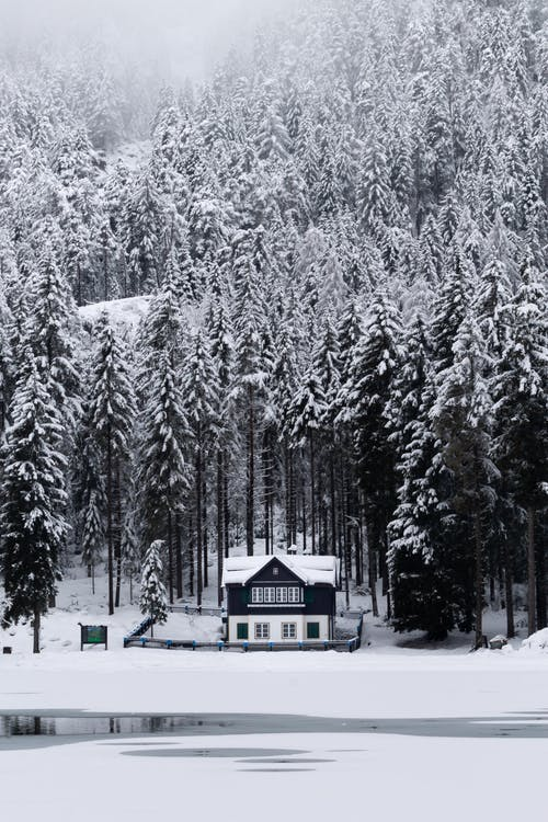 White and Black House Surrounded by Trees Covered With Snow